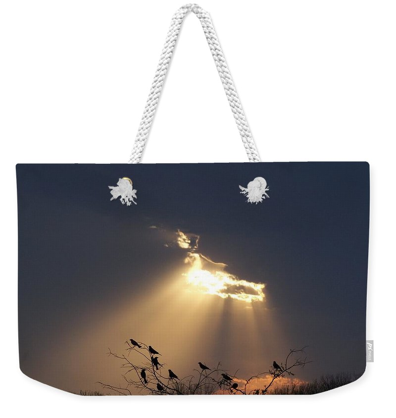 Storm Weekender Tote Bag featuring the photograph Blackbird Sky by Gale Cochran-Smith