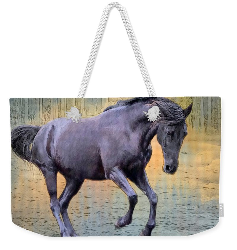 Alicegipsonphotographs Weekender Tote Bag featuring the photograph Blacks Danse by Alice Gipson