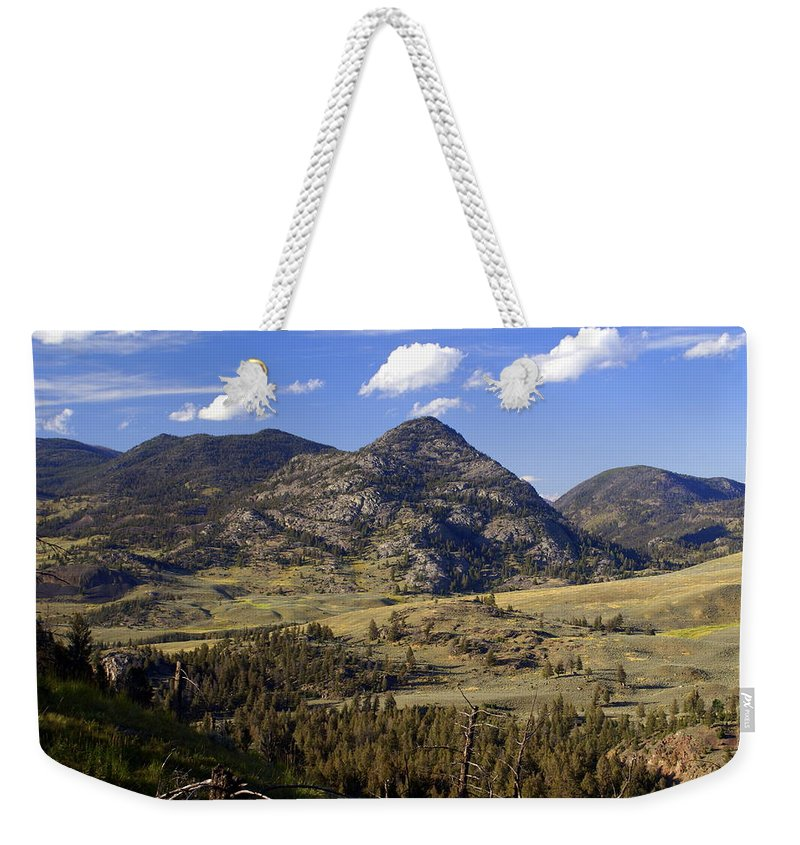 Yellowstone National Park Weekender Tote Bag featuring the photograph Blacktail Road Landscape 2 by Marty Koch