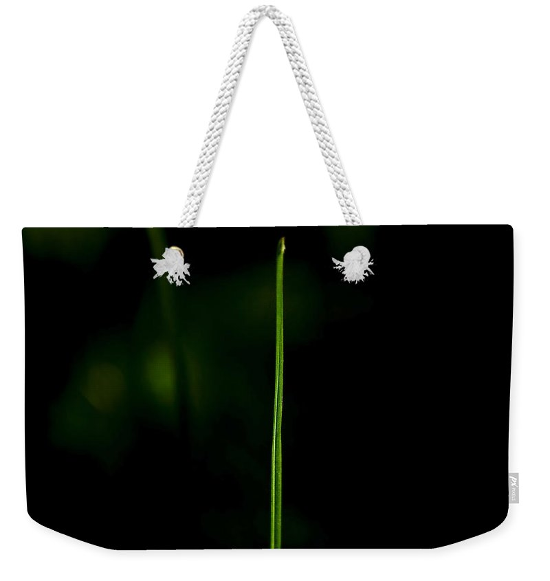 Grass Weekender Tote Bag featuring the photograph Blade Of Grass by Svetlana Sewell