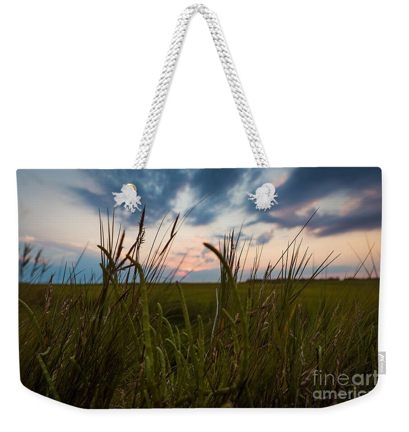 Sunrise Weekender Tote Bag featuring the photograph Blades Of Sunset by Alissa Beth Photography