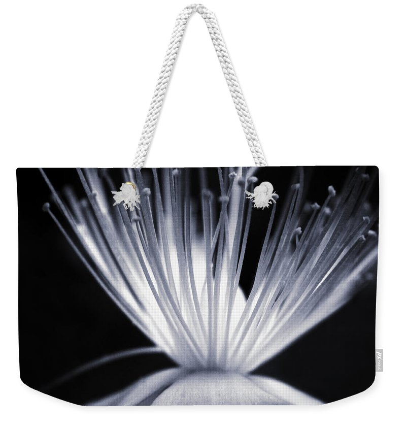 Art Weekender Tote Bag featuring the photograph Blaze by Dorit Fuhg