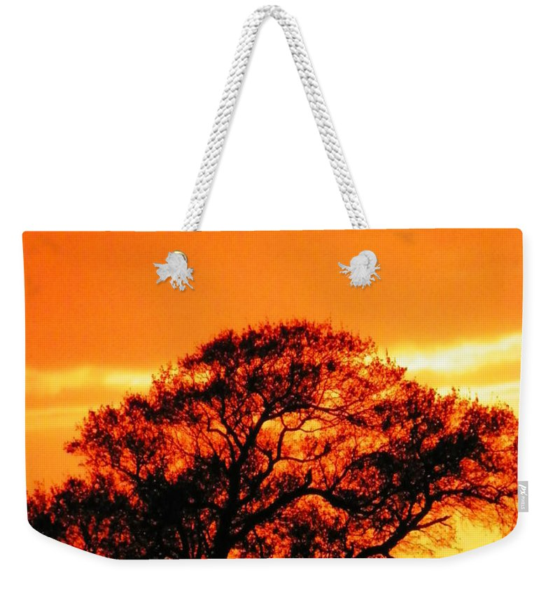 Trees Weekender Tote Bag featuring the photograph Blazing Oak Tree by Karen Wiles