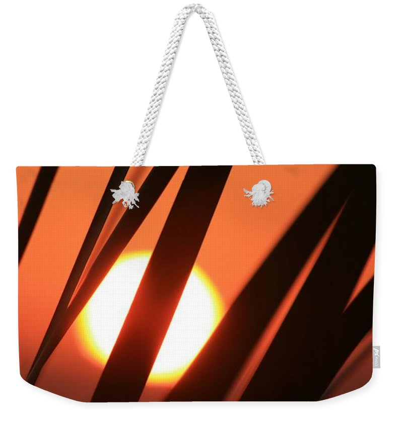 Sun Weekender Tote Bag featuring the photograph Blazing Sunset And Grasses by Nadine Rippelmeyer