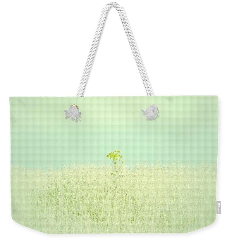 Connie Handscomb Weekender Tote Bag featuring the photograph Bleached Sunshine by Connie Handscomb