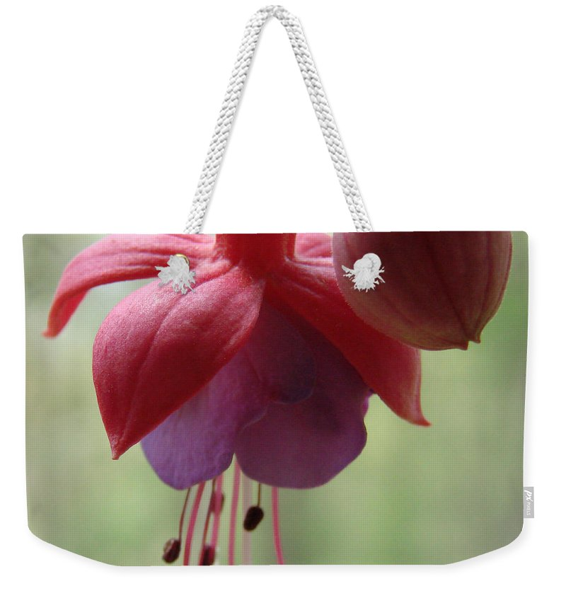 Flowers Weekender Tote Bag featuring the photograph Beauty by Mary Halpin