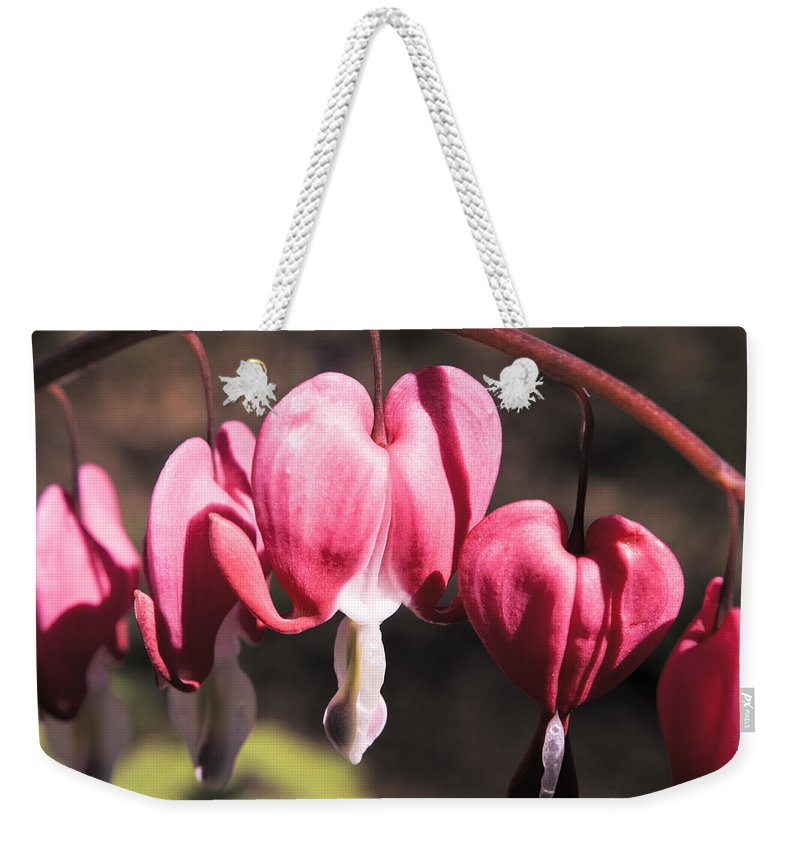 Bleeding Weekender Tote Bag featuring the photograph Bleeding Hearts by Teresa Mucha