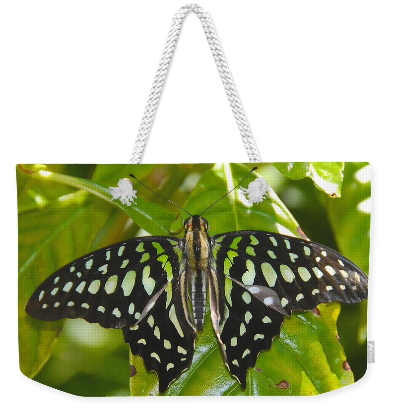 Butterfly Weekender Tote Bag featuring the photograph Blending In by David Lee Thompson