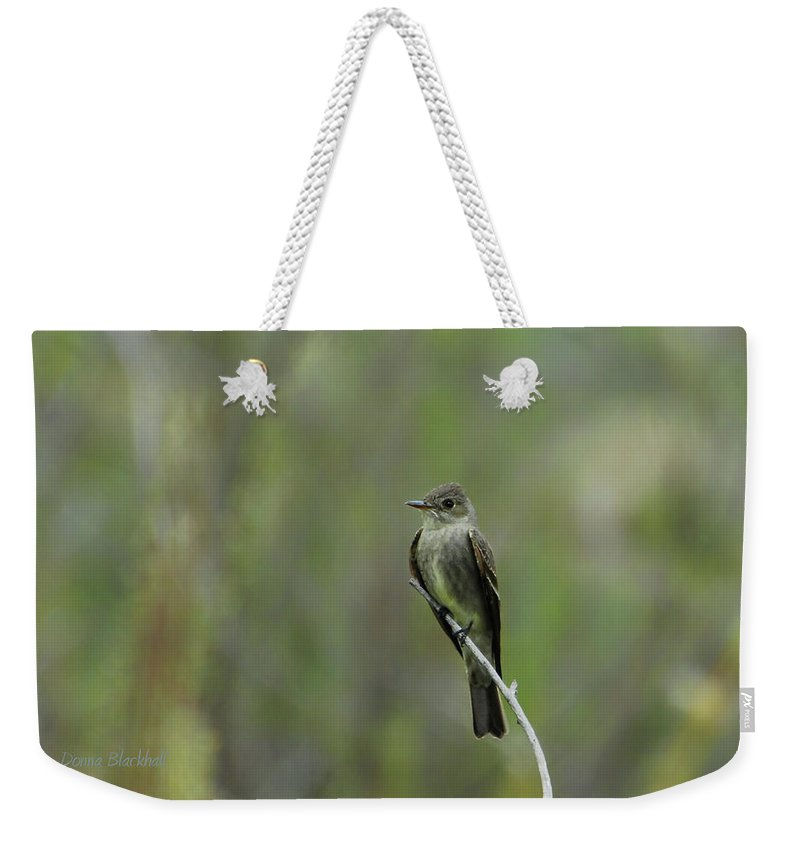 Bird Weekender Tote Bag featuring the photograph Blending In by Donna Blackhall