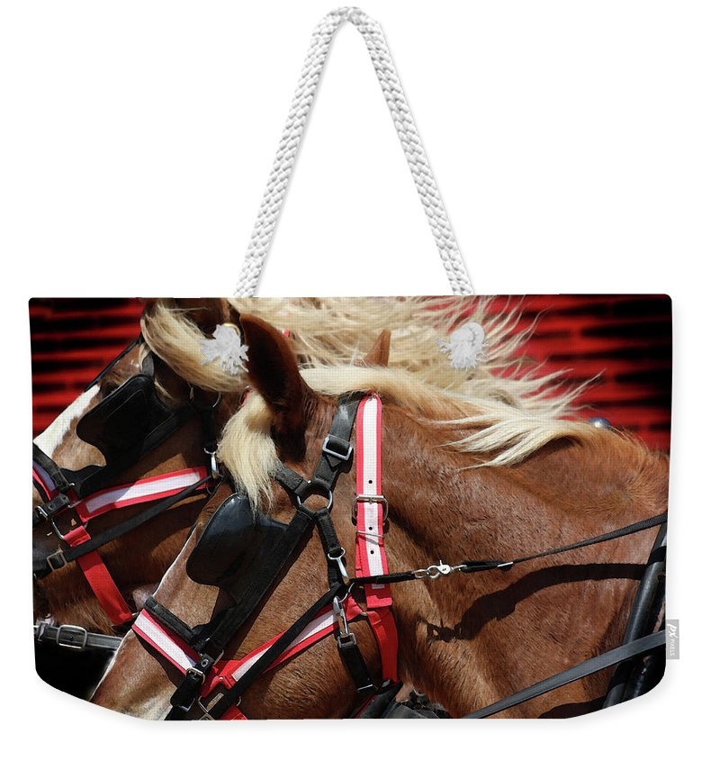 Western Art Weekender Tote Bag featuring the photograph Blinders On by Kim Henderson
