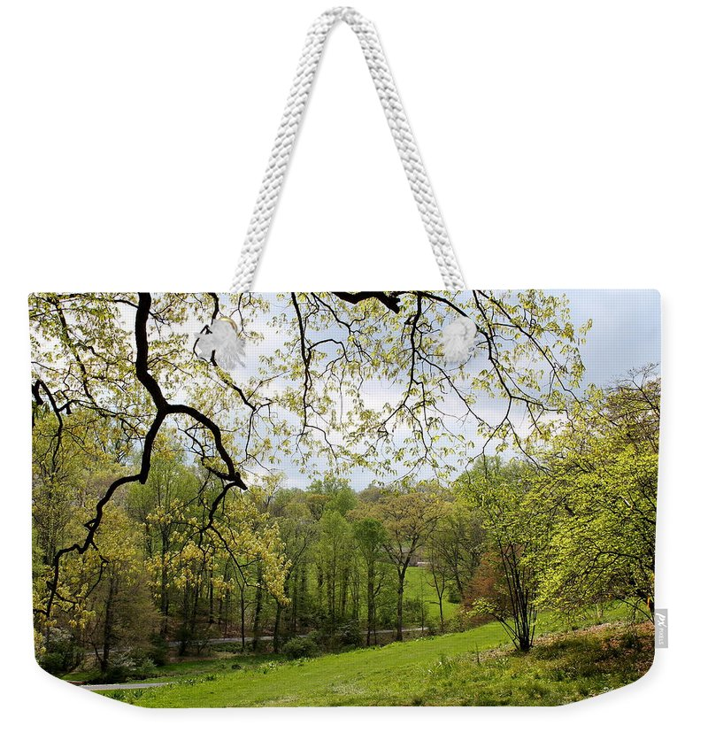 Landscape Weekender Tote Bag featuring the photograph Blooming Landscape by Deborah Crew-Johnson