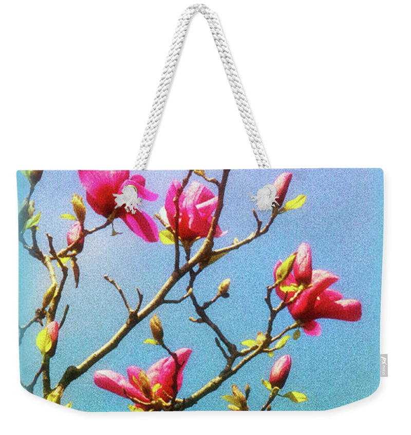 Blooming Magnolia Weekender Tote Bag featuring the photograph Blooming Magnolia by Carolyn Derstine