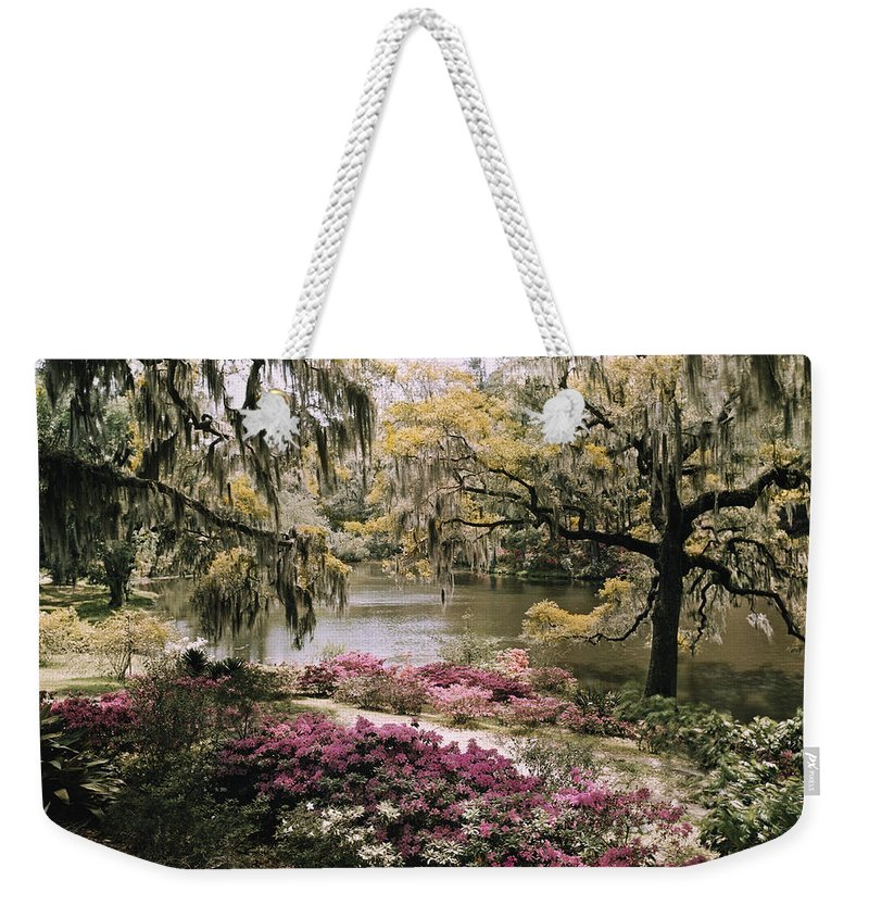 Day Weekender Tote Bag featuring the photograph Blooming Shrubs And Trees by B. Anthony Stewart