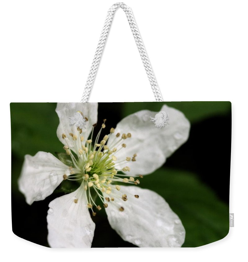 Flower Weekender Tote Bag featuring the photograph Blossom by Angela Rath