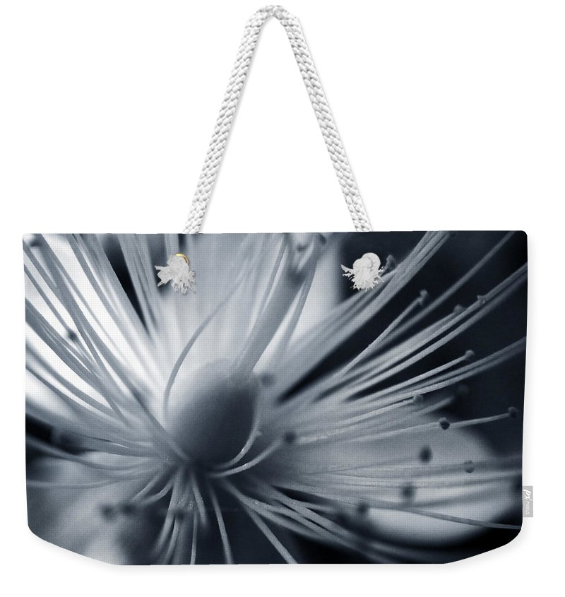 Art Weekender Tote Bag featuring the photograph Blossom by Dorit Fuhg