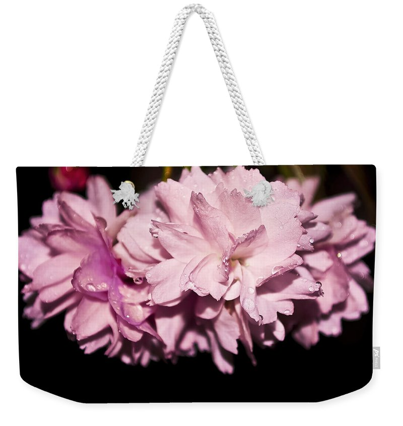 Flower Weekender Tote Bag featuring the photograph Blossom by Svetlana Sewell