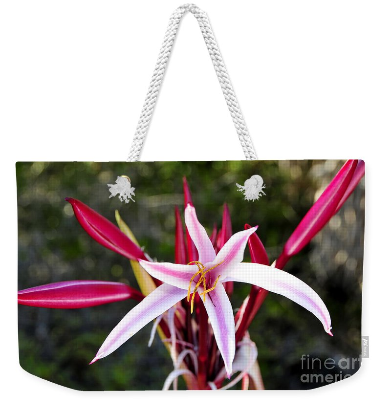 Blossom Weekender Tote Bag featuring the photograph Blossoming Beauty by David Lee Thompson
