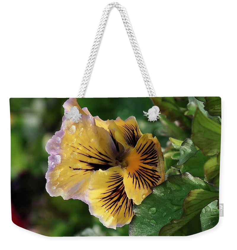 Floral Weekender Tote Bag featuring the photograph Blossoms And Waterdrops by Jeff Swan