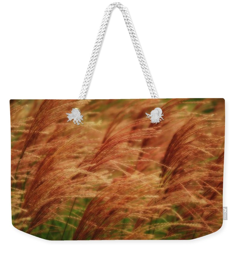 Win Weekender Tote Bag featuring the photograph Blowing In The Wind by Gaby Swanson