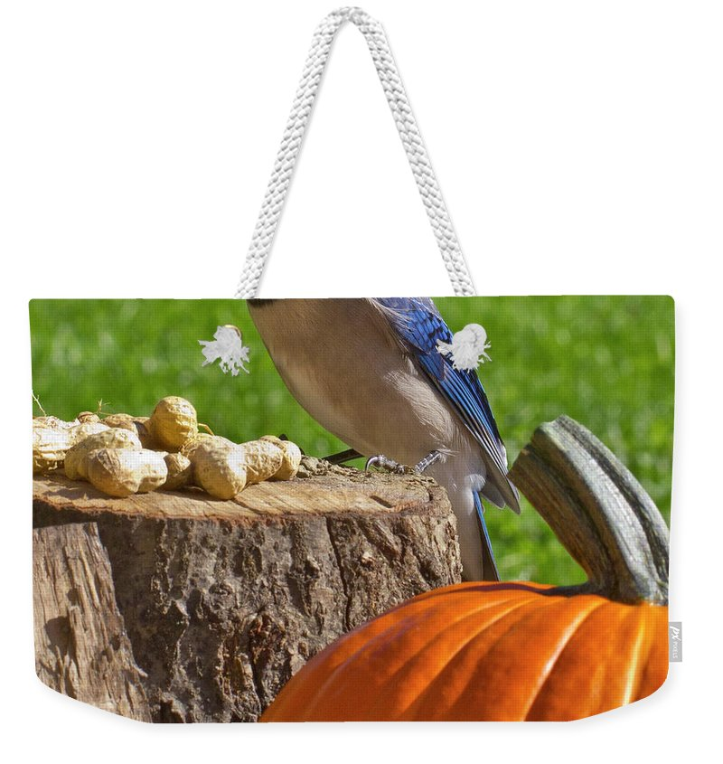 Backyard Weekender Tote Bag featuring the photograph Blu Goes Nuts by Shelley Neff