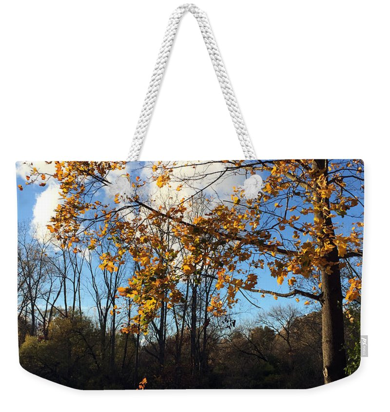 River Weekender Tote Bag featuring the photograph Blue And Gold by Kaeleigh Gray