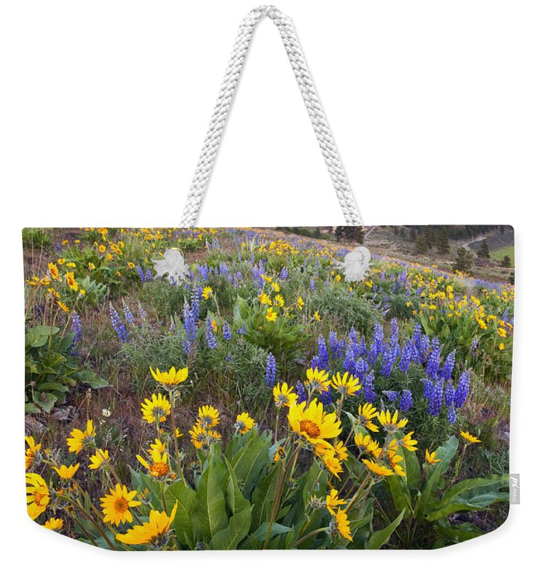 Lupine Weekender Tote Bag featuring the photograph Blue And Gold by Mike Dawson