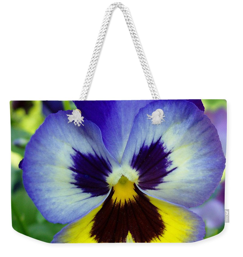 Flowers Weekender Tote Bag featuring the photograph Blue And Yellow Pansy by Nancy Mueller