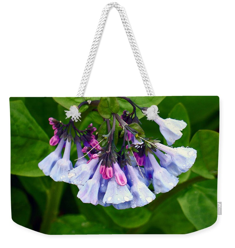 Native Landscape Weekender Tote Bag featuring the photograph Blue Bells by Steve Karol