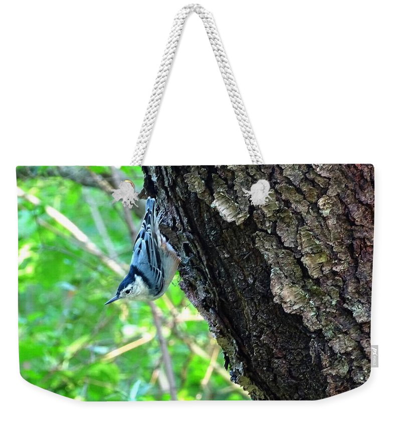 Bird Weekender Tote Bag featuring the photograph Blue Bird 2 by Lilia D
