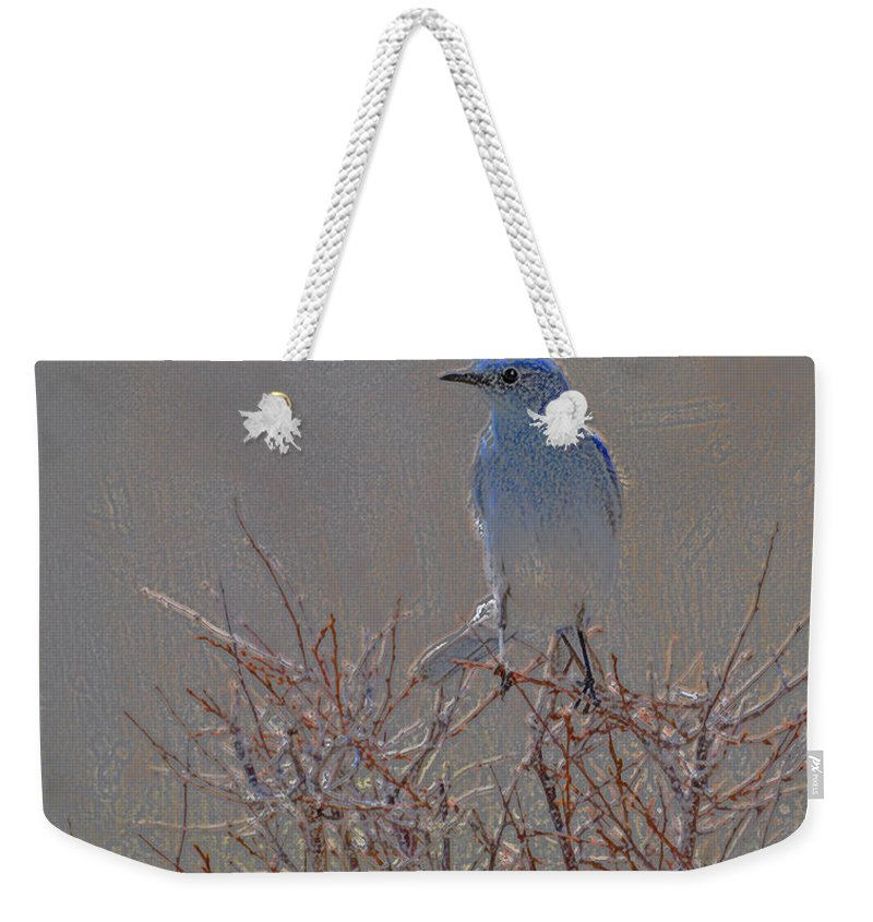 Colored Pencil Weekender Tote Bag featuring the photograph Blue Bird Colored Pencil by Heather Coen