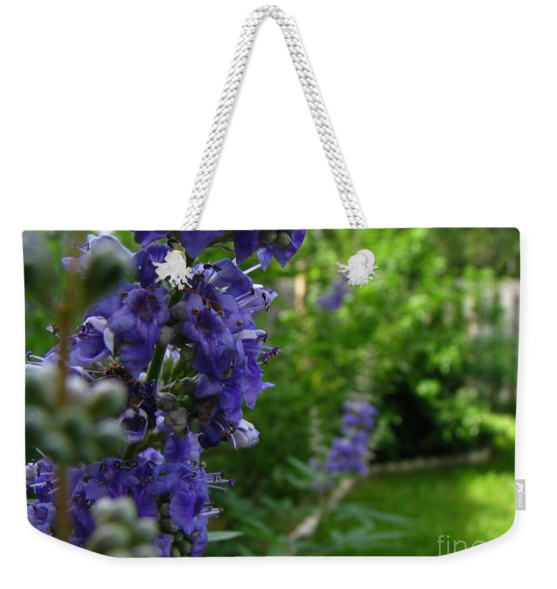 Art For The Wall...patzer Photography Weekender Tote Bag featuring the photograph Blue Butterfly by Greg Patzer