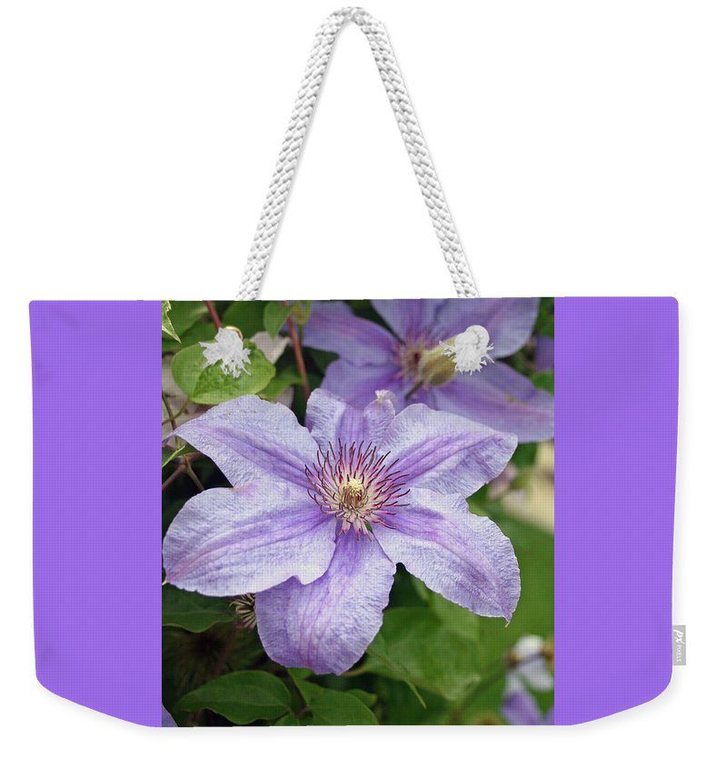 Clematis Weekender Tote Bag featuring the photograph Blue Clematis by Margie Wildblood