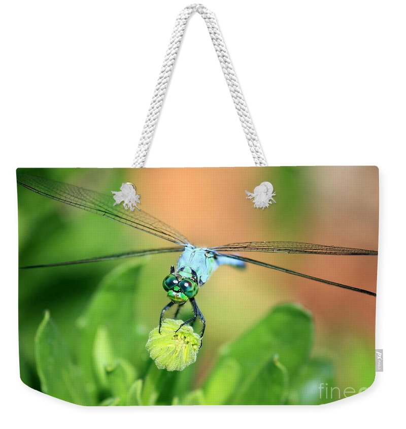 Dragonfly Weekender Tote Bag featuring the photograph Blue Dragonfly And Bud by Carol Groenen