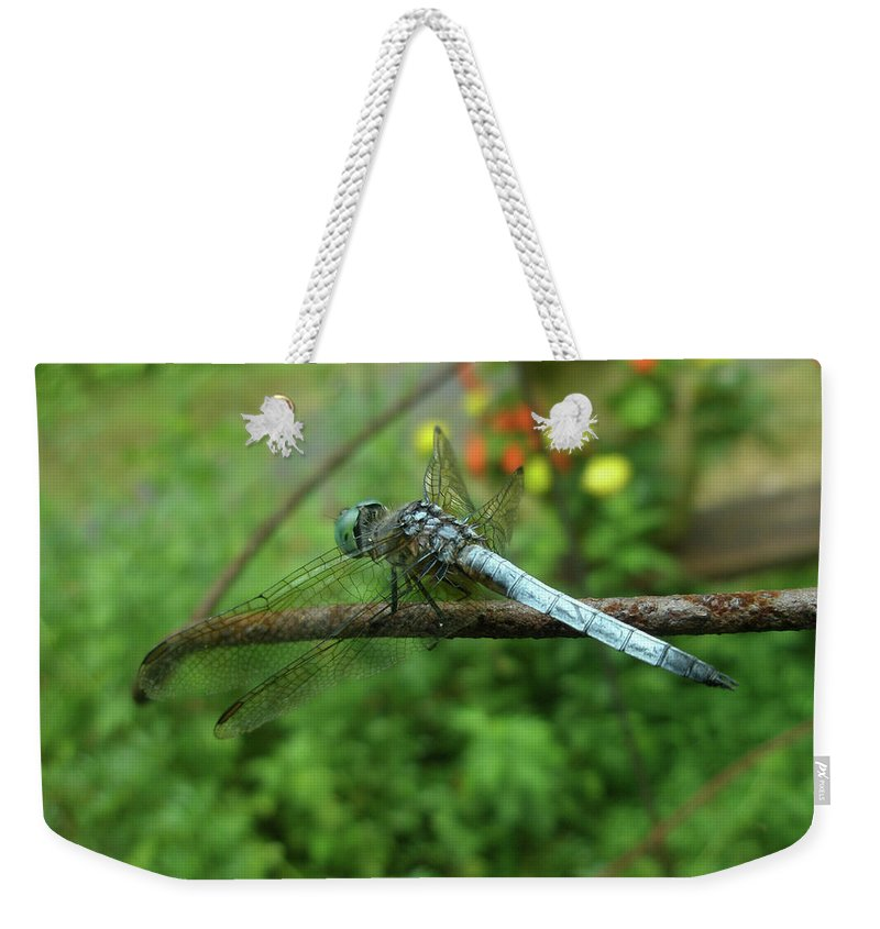Dragonfly Weekender Tote Bag featuring the photograph Blue Dragonfly by Mother Nature