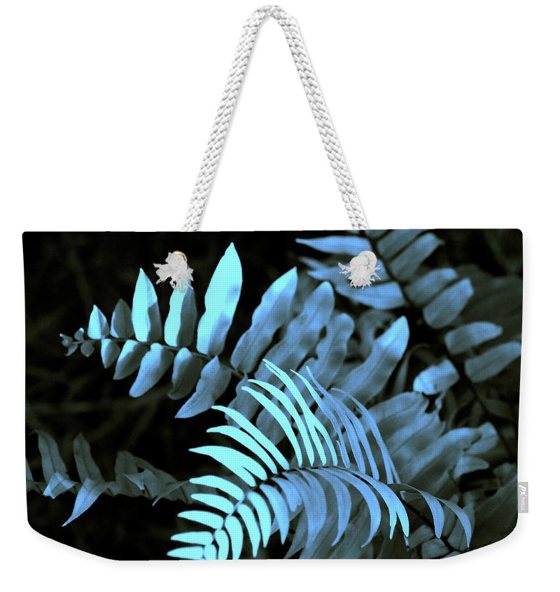 Abstract Weekender Tote Bag featuring the photograph Blue Fern by Susanne Van Hulst