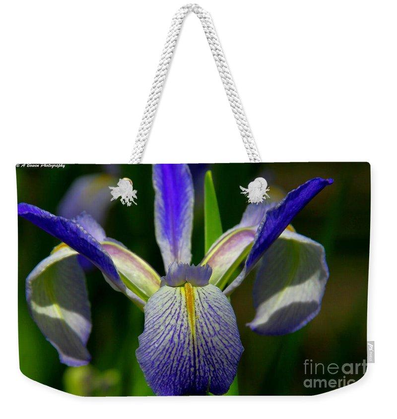 Blue Flag Iris Weekender Tote Bag featuring the photograph Blue Flag Iris by Barbara Bowen
