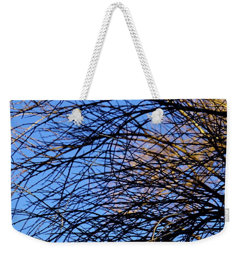 Botanical Weekender Tote Bag featuring the photograph Blue Grace by Bonnie See