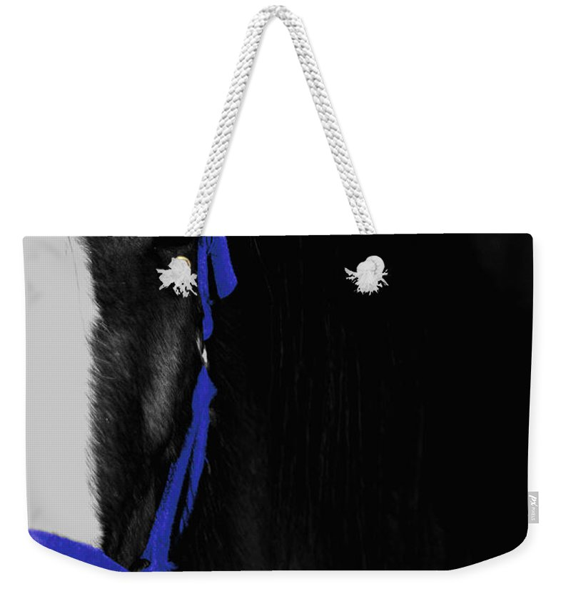 Horse Weekender Tote Bag featuring the photograph Blue Halter by Hannah Breidenbach