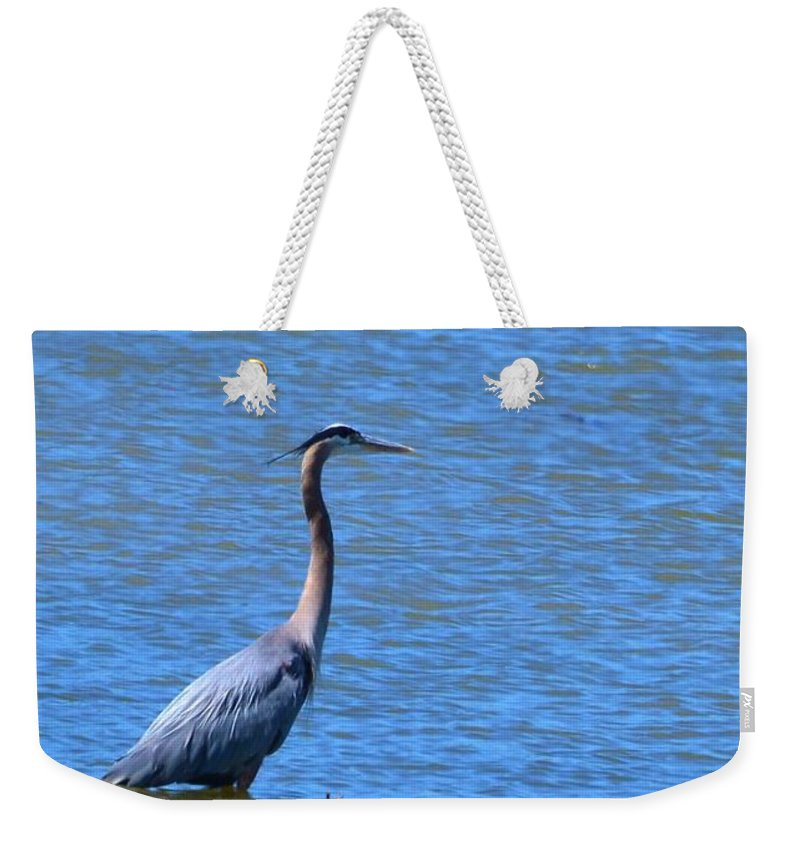 Heron Weekender Tote Bag featuring the photograph Blue Heron by Eileen Brymer
