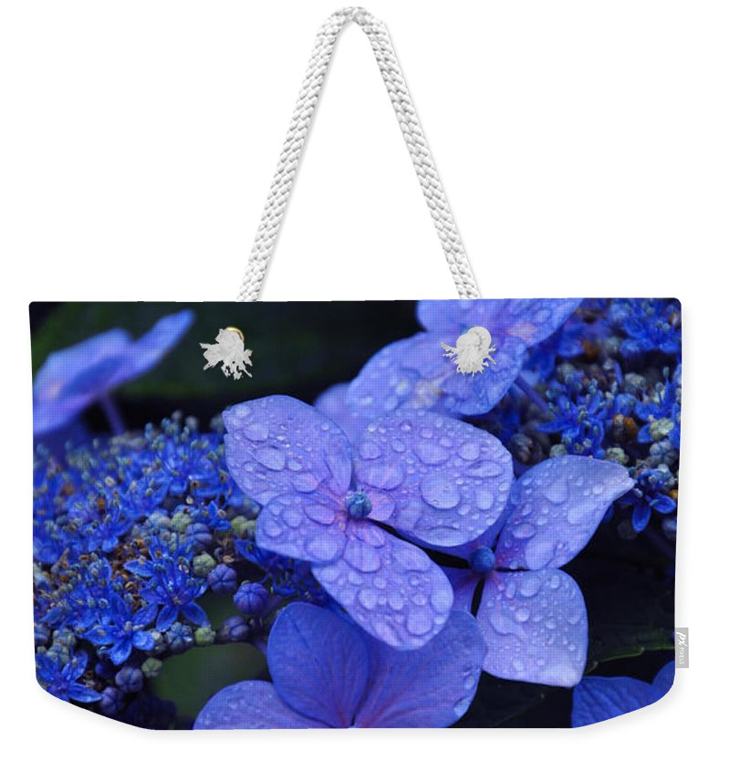 Flowers Weekender Tote Bag featuring the photograph Blue Hydrangea by Noah Cole