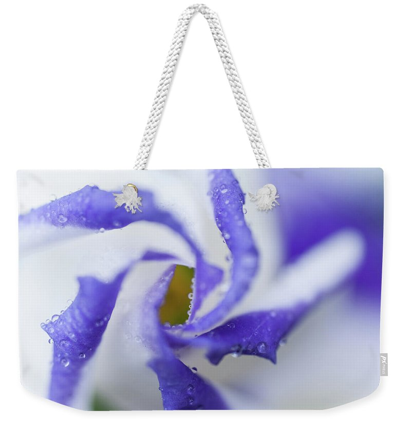 Jenny Rainbow Fine Art Photography Weekender Tote Bag featuring the photograph Blue Inspiration. Lisianthus Flower Macro by Jenny Rainbow