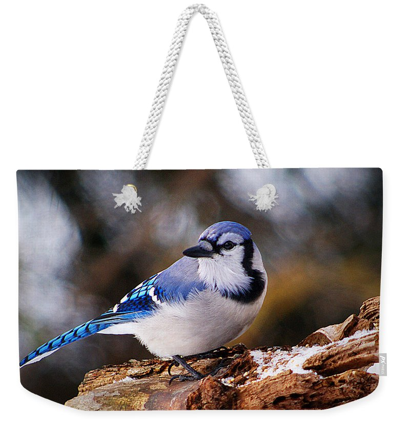 Birds Weekender Tote Bag featuring the photograph Blue Jay Day by Arthur Miller