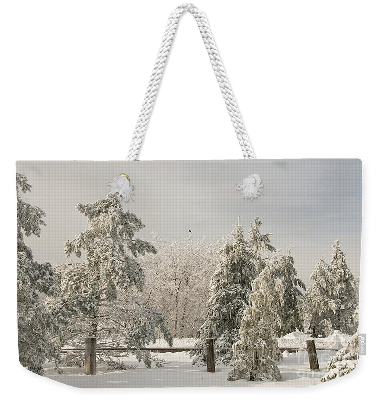 Winter Weekender Tote Bag featuring the photograph Blue Knob Winter by Lois Bryan
