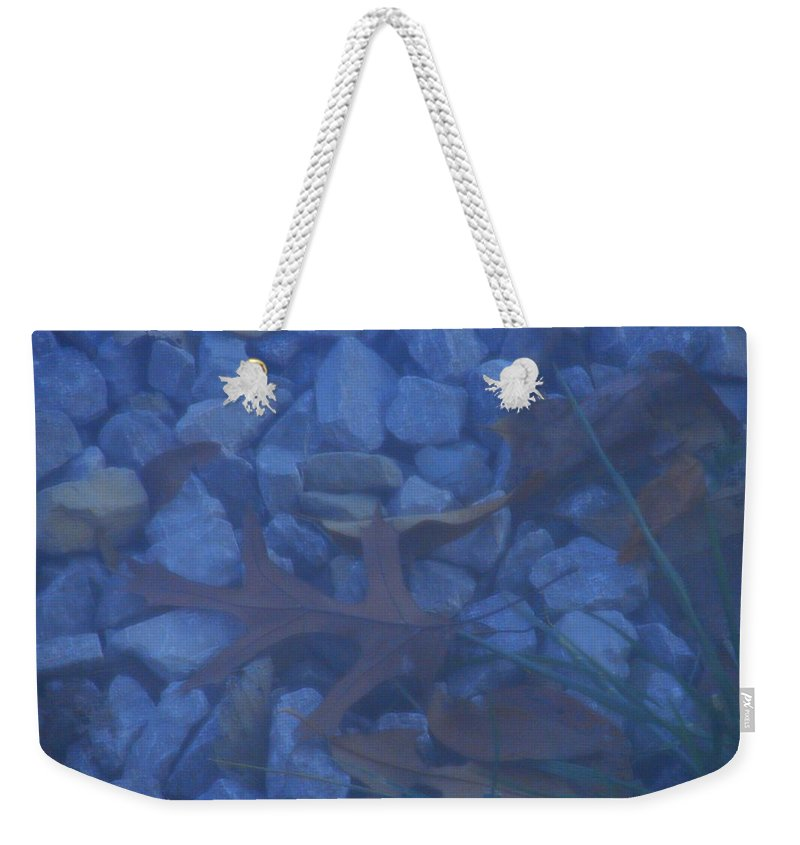 Weekender Tote Bag featuring the photograph Blue Leaf by Luciana Seymour