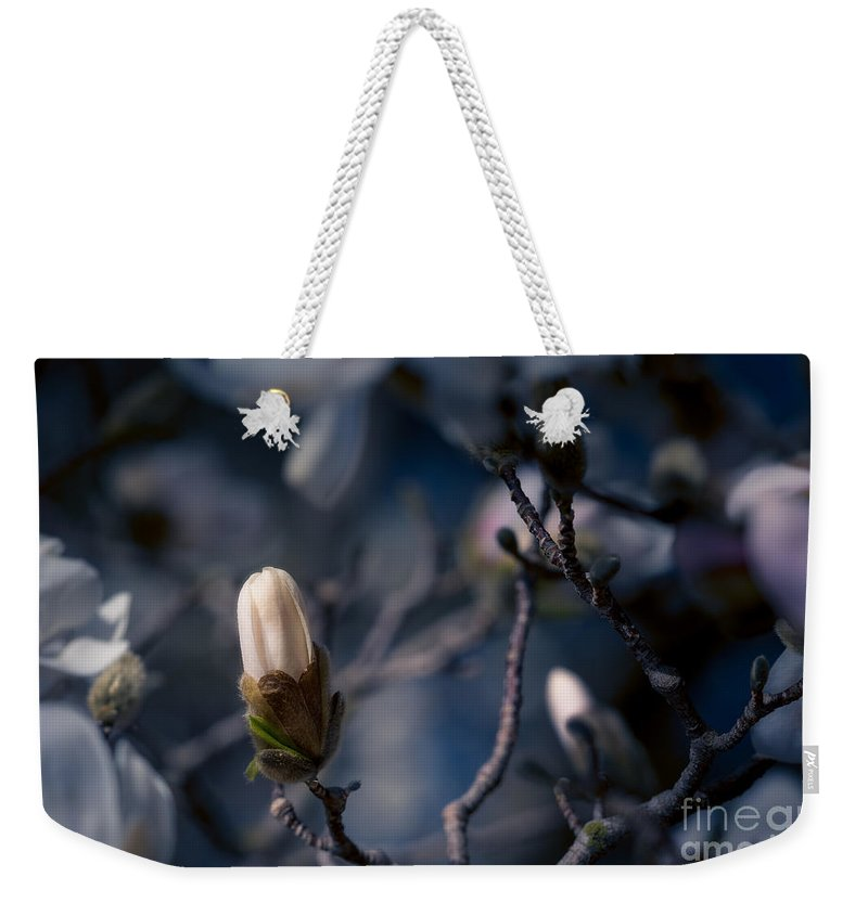 Bloom Weekender Tote Bag featuring the photograph Blue Magnolia by Joe Mamer