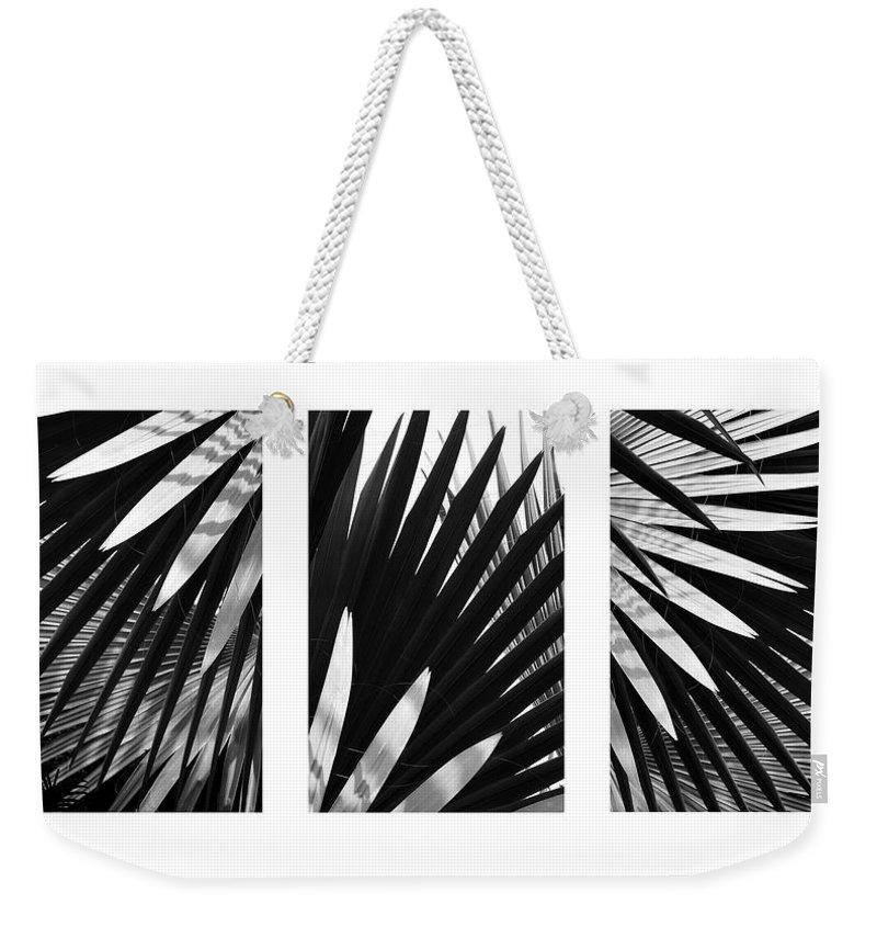 Patterns Weekender Tote Bag featuring the photograph Blue Palma Triptych by John Bartosik