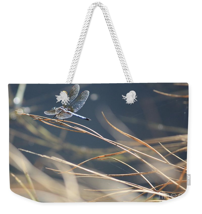 Blue Weekender Tote Bag featuring the photograph Blue Pond by Carol Groenen