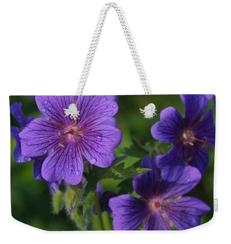 Blue Weekender Tote Bag featuring the photograph Blue Raindrops by Ian MacDonald