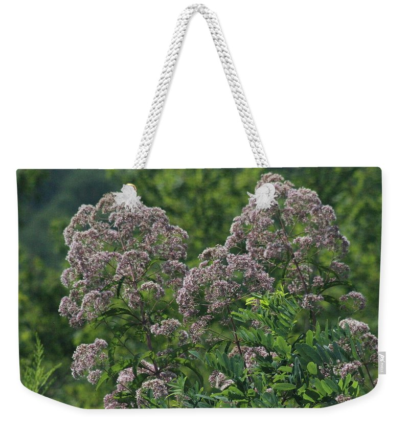 Flowers Weekender Tote Bag featuring the photograph Blue Ridge Flowers by Tina Foote