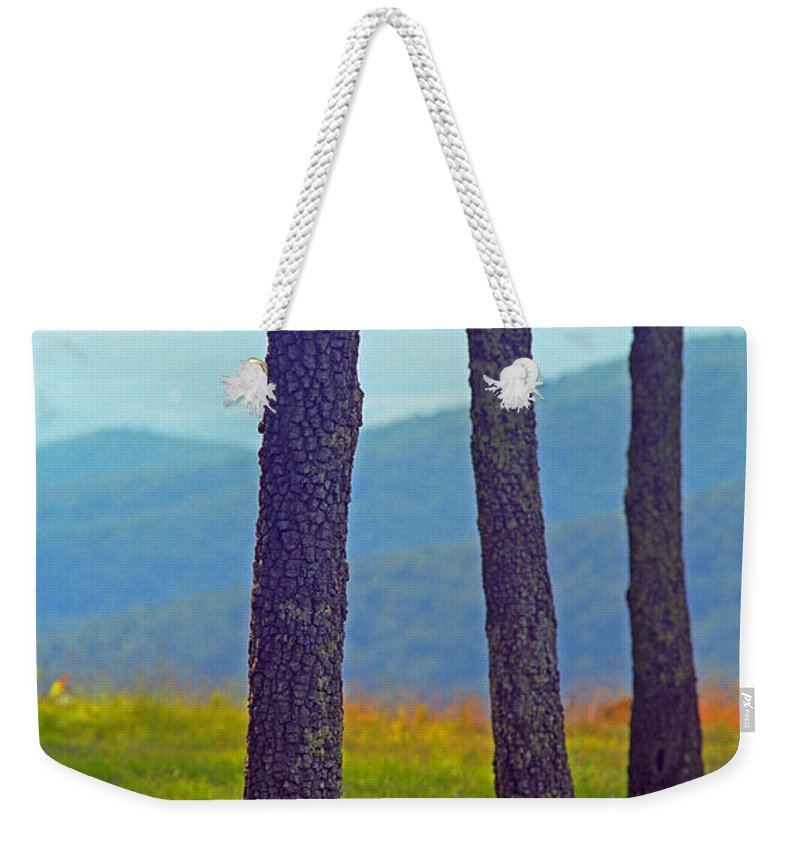 Alpine Weekender Tote Bag featuring the photograph Blue Ridge Mountains Of Virginia by Frank Romeo